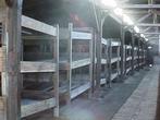 Внутри жилого барака. Аушвиц 2 (Биркенау)