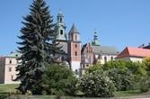 Краков, Кафедральный собор