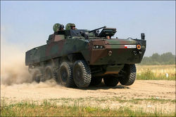 Польша увеличила заказ на бронетранспортеры Rosomak